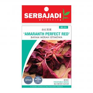 Serbajadi amaranth perfect red seeds