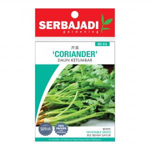 Serbajadi coriander seeds