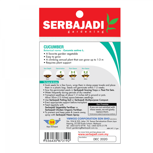Serbajadi cucumber seeds information