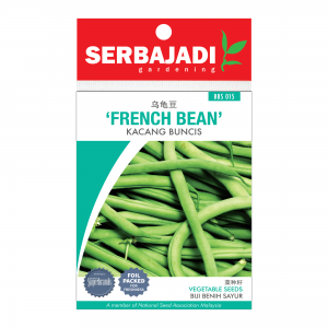 Serbajadi French bean seeds