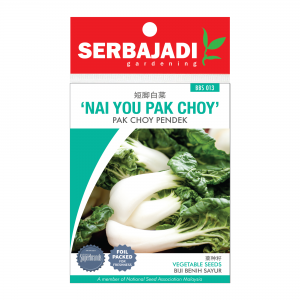 Serbajadi nai you pak choy seeds